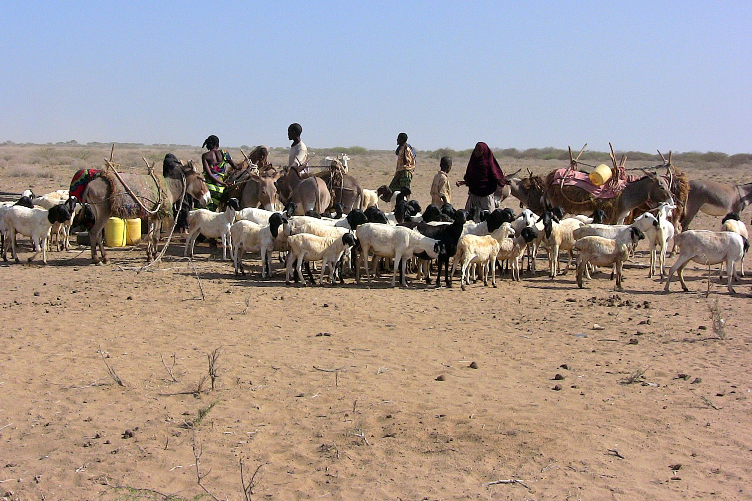 an introduction to the food production in tropical africa Introduction to sociology/society  some pastoralist societies also engage in some measure of horticultural food production and most industrial  tropical.