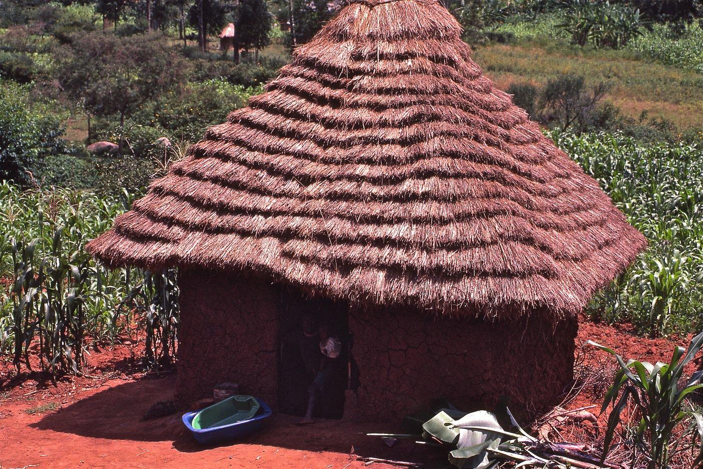 11 Africa Shelter 098 123